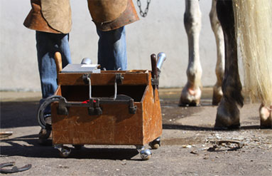 Wyoming School Of Horseshoeing And Farrier School To Learn How To